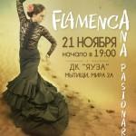 """FlamencA"" концерт фламенко Ana Pasionaria"